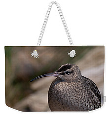 Weekender Tote Bag featuring the photograph Whimbrel by Bianca Nadeau