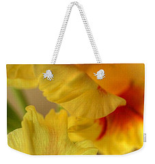 Whimsy Weekender Tote Bag by Deborah  Crew-Johnson