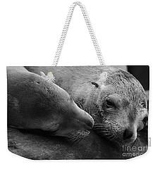 Whisker Love Weekender Tote Bag