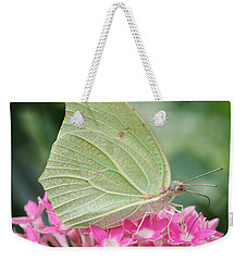 Weekender Tote Bag featuring the photograph White Angled Sulphur by Judy Whitton