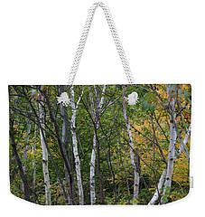 White Birches In The Woods Weekender Tote Bag by Denyse Duhaime