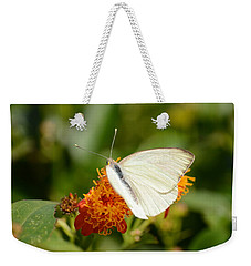 Weekender Tote Bag featuring the photograph White Butterfly On Mexican Flame by Debra Martz