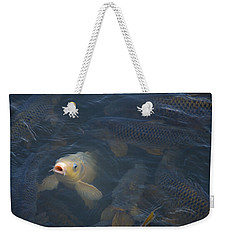 White Carp In The Lake Weekender Tote Bag