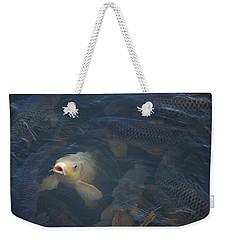 White Carp In The Lake Weekender Tote Bag by Chris Flees