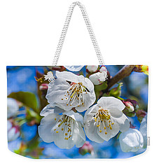 White Cherry Blossoms Blooming In The Springtime Weekender Tote Bag