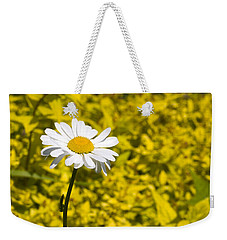 White Daisy In Yellow Garden Weekender Tote Bag