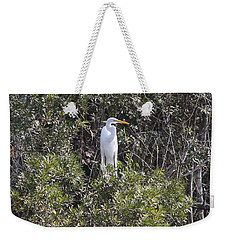 Weekender Tote Bag featuring the photograph White Egret In The Swamp by Christiane Schulze Art And Photography
