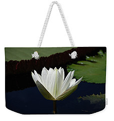 Weekender Tote Bag featuring the photograph White Flower Growing Out Of Lily Pond by Jennifer Ancker