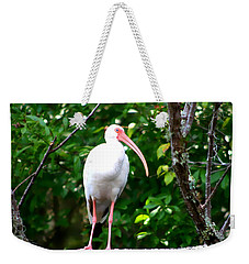 Weekender Tote Bag featuring the photograph White Ibis by Debra Forand