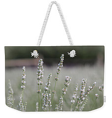 Weekender Tote Bag featuring the photograph White Lavender by Lynn Sprowl