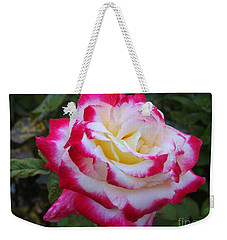 White Rose With Pink Texture Hybrid Weekender Tote Bag by Lingfai Leung
