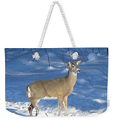Weekender Tote Bag featuring the photograph White Tail Deer by Brenda Brown