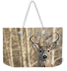 White-tailed Buck Weekender Tote Bag