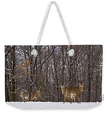 White Tailed Deer Weekender Tote Bag by Anthony Sacco