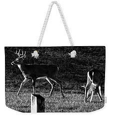 White Tailed Deer Weekender Tote Bag