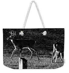 White Tailed Deer Weekender Tote Bag by Chris Flees