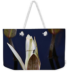 Under Careful Inspection Weekender Tote Bag by Yvonne Wright