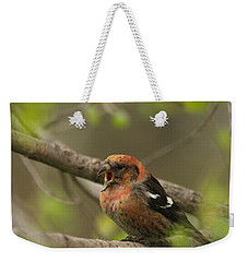 White-winged Crossbill Weekender Tote Bag by James Peterson