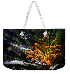 Weekender Tote Bag featuring the photograph Who Am I by Miroslava Jurcik