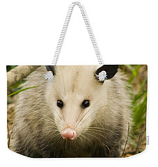 Who Says Possums Are Ugly Weekender Tote Bag