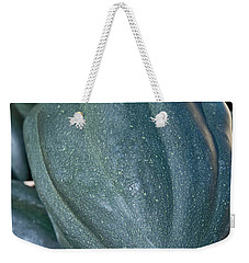 Whole Acorn Squash Art Prints Weekender Tote Bag