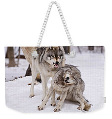 Weekender Tote Bag featuring the photograph Who's The Boss by Wolves Only