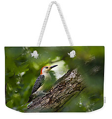 Red Bellied Woodpecker Weekender Tote Bag by Christina Rollo