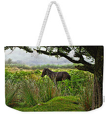 Weekender Tote Bag featuring the photograph Wild Dartmoor Foal by Menega Sabidussi