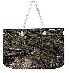 Weekender Tote Bag featuring the photograph Wild Fire Aftermath by Amanda Stadther