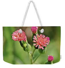 Weekender Tote Bag featuring the photograph Wild Flower by Olga Hamilton