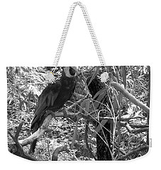 Weekender Tote Bag featuring the photograph Wild Hawaiian Parrot Black And White by Joseph Baril