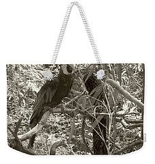 Weekender Tote Bag featuring the photograph Wild Hawaiian Parrot Sepia by Joseph Baril