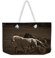 Wild Mustangs Of New Mexico 10 Weekender Tote Bag