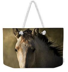Wild Mustangs Of New Mexico 35 Weekender Tote Bag