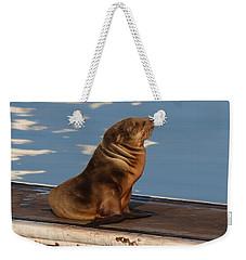 Wild Pup Sun Bathing - 2 Weekender Tote Bag