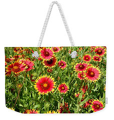Weekender Tote Bag featuring the photograph Wild Red Daisies #4 by Robert ONeil
