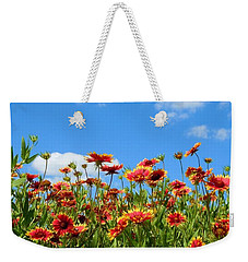 Weekender Tote Bag featuring the photograph Wild Red Daisies #5 by Robert ONeil