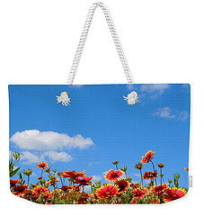 Weekender Tote Bag featuring the photograph Wild Red Daisies #6 by Robert ONeil