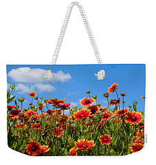 Weekender Tote Bag featuring the photograph Wild Red Daisies #7 by Robert ONeil