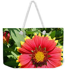Weekender Tote Bag featuring the photograph Wild Red Daisy #2 by Robert ONeil