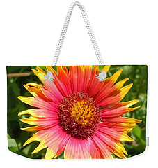 Weekender Tote Bag featuring the photograph Wild Red Daisy #3 by Robert ONeil