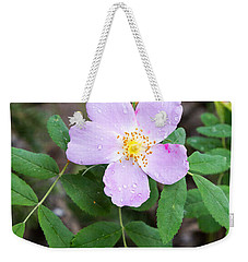 Weekender Tote Bag featuring the photograph Wild Gentian by Michael Chatt