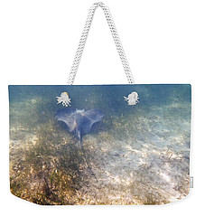 Weekender Tote Bag featuring the photograph Wild Sting Ray by Eti Reid
