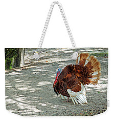 Wild Turkey Weekender Tote Bag by Aimee L Maher Photography and Art Visit ALMGallerydotcom