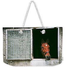 Window View Weekender Tote Bag by David Porteus