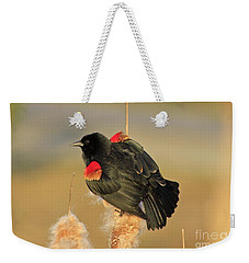 Weekender Tote Bag featuring the photograph Wings In A Golden Light 2 by Chris Anderson