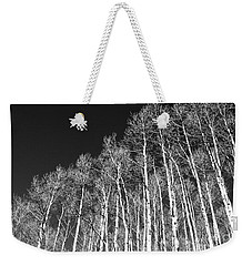 Weekender Tote Bag featuring the photograph Winter Aspens by Roselynne Broussard