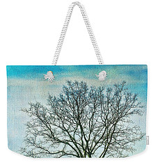 Weekender Tote Bag featuring the photograph Winter Blues by Gary Slawsky