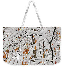 Weekender Tote Bag featuring the photograph Winter Branches by Ann Horn