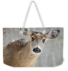 Winter Buck Weekender Tote Bag by Amy Porter
